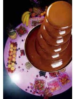Chocolate Fountain 9