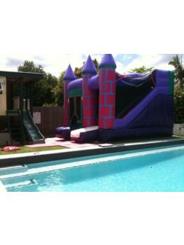 Mini Purple Front right view pool