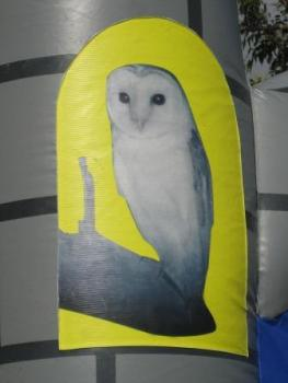 Wizard II Owl picture3